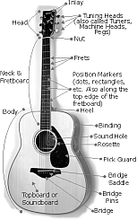 The Anatomy and Parts of a Guitar... - Hear and Play Music Learning ...